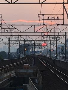 夕陽2.jpg