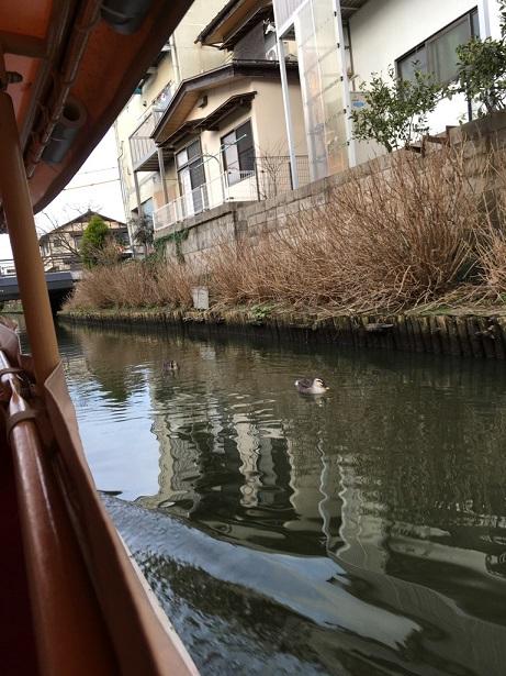 松江城-18.jpg